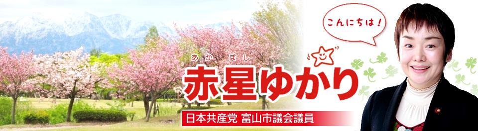 赤星ゆかり(日本共産党富山市議会議員)